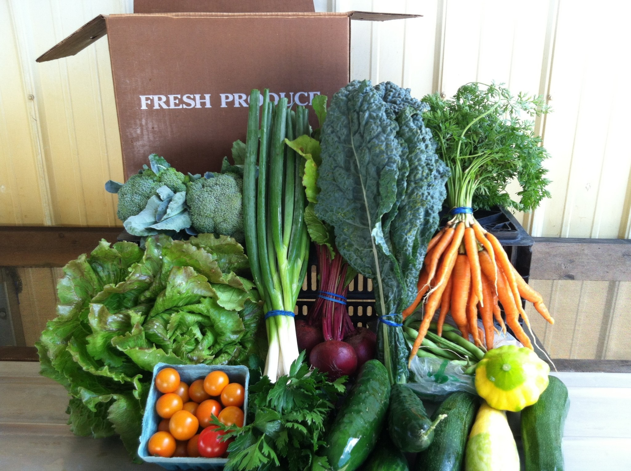 CSA box with green onion carrot cucumber lettuce and other vegetables