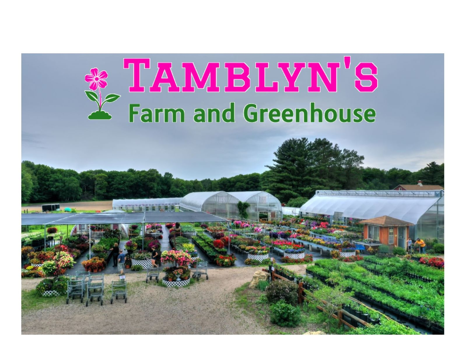 Tamblyn 8217 S Farm And Greenhouse