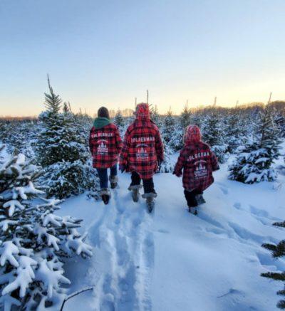 Goldenman Christmas Trees Minnesota Grown