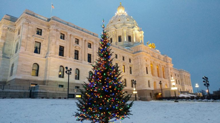 Happy land tree farm christmas tree displayed at the state capitol in Minnesota