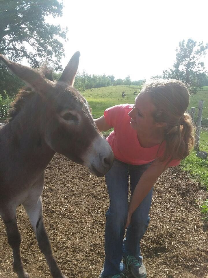 woman petting a donkey