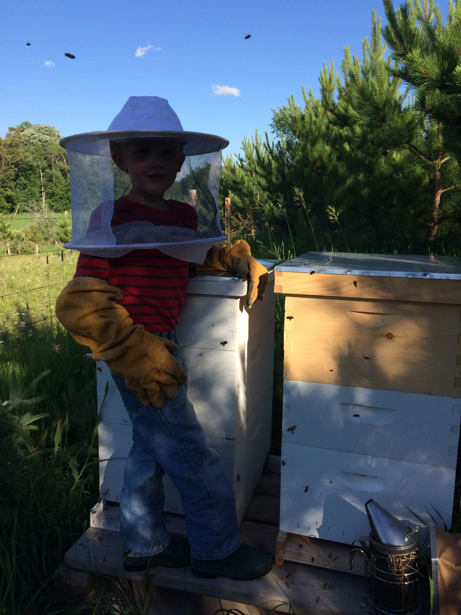 little boy around 7 years old wearing protective bee keeping gear standing by hive boxes
