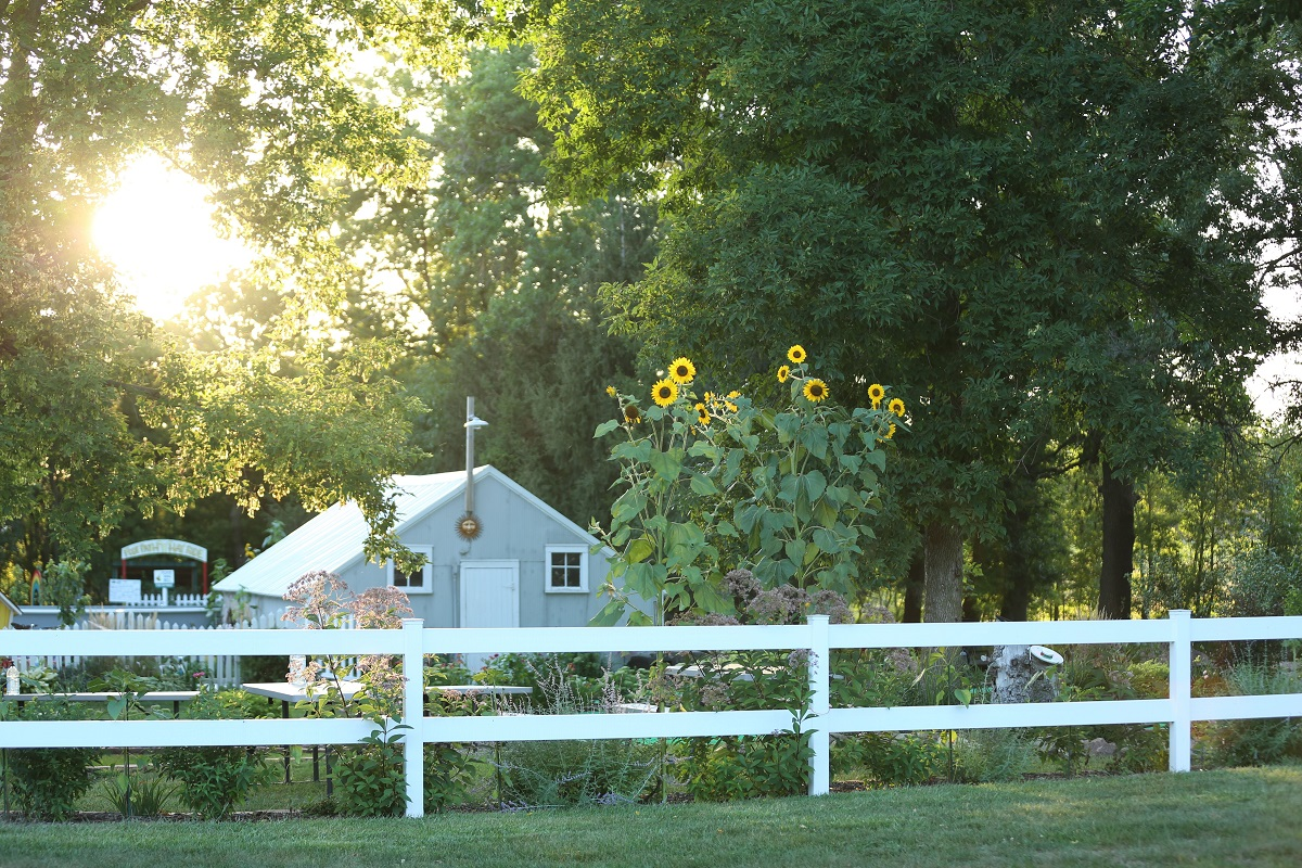Center Creek Apple Orchard house, fence, and sunflowers