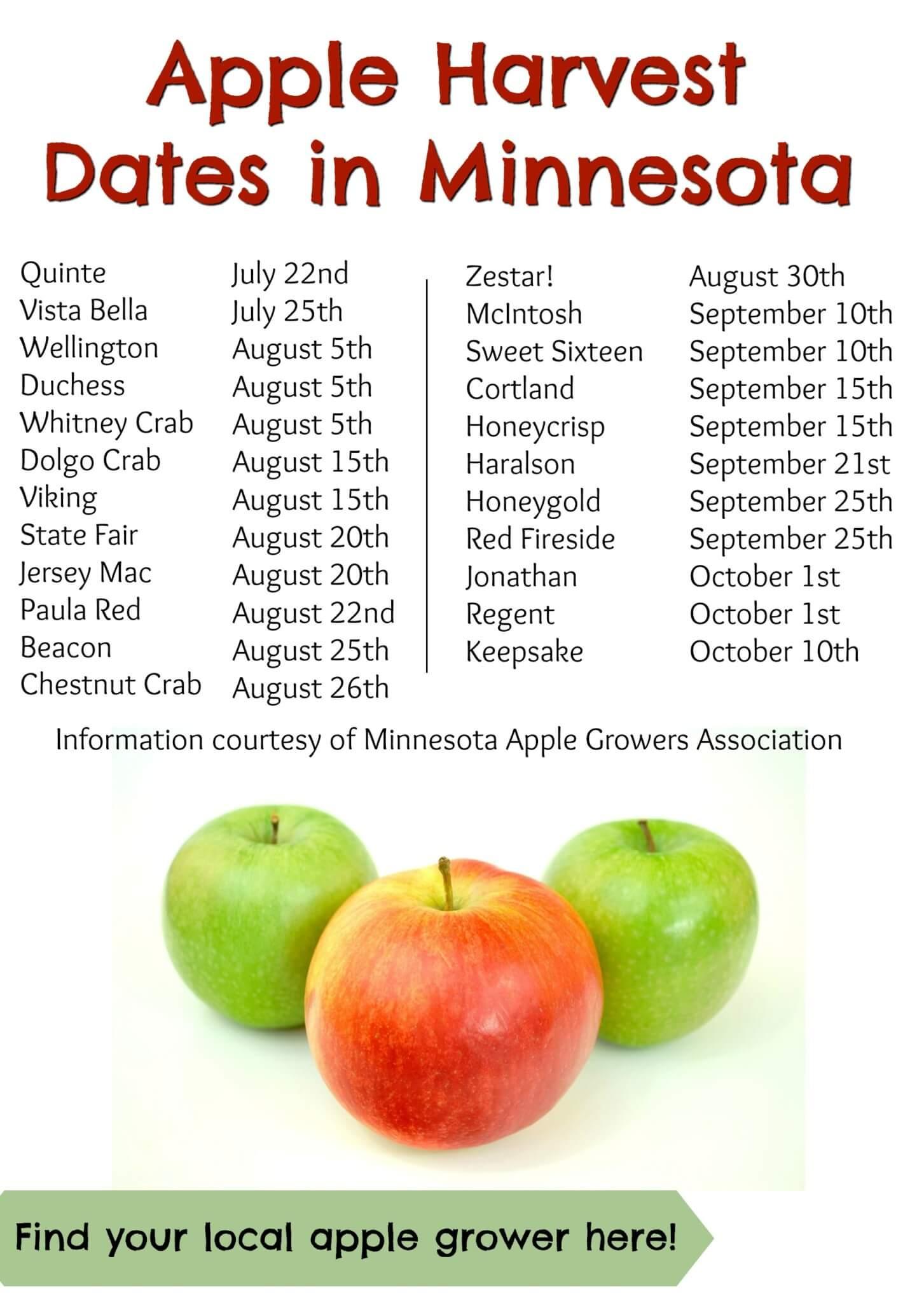 apple-harvest-dates-in-minnesota