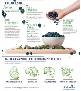 Blueberry Infographic