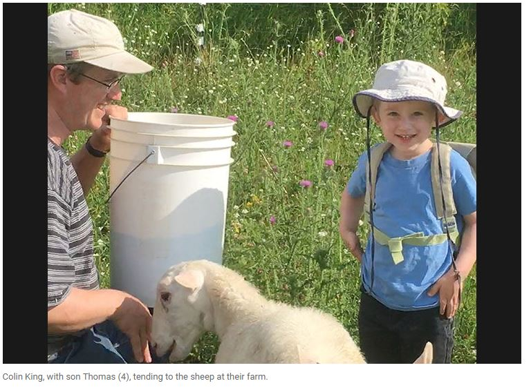 Colin King, with son Thomas (4), tending to the sheep at their farm.