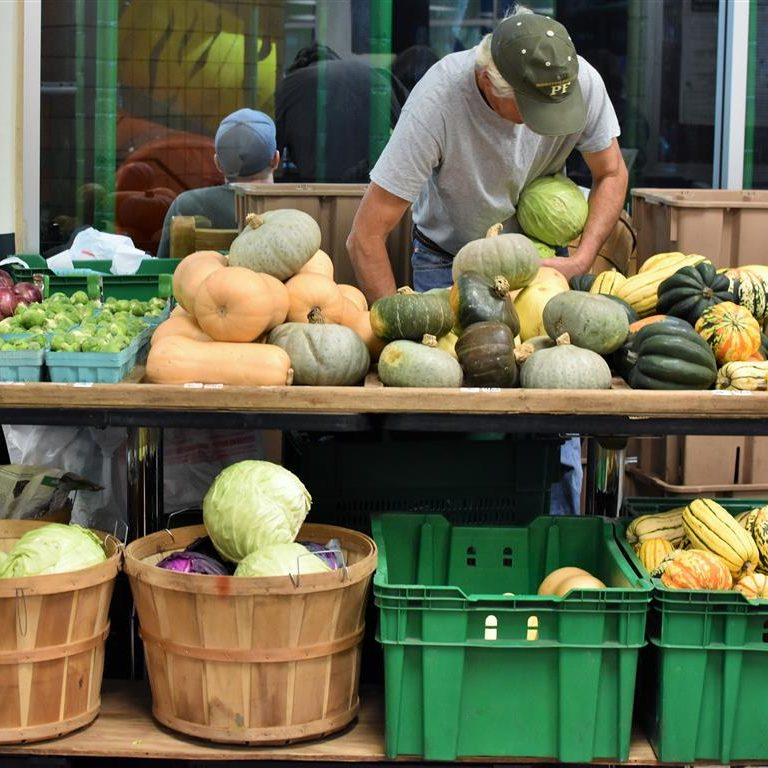 man organizing melons and squash