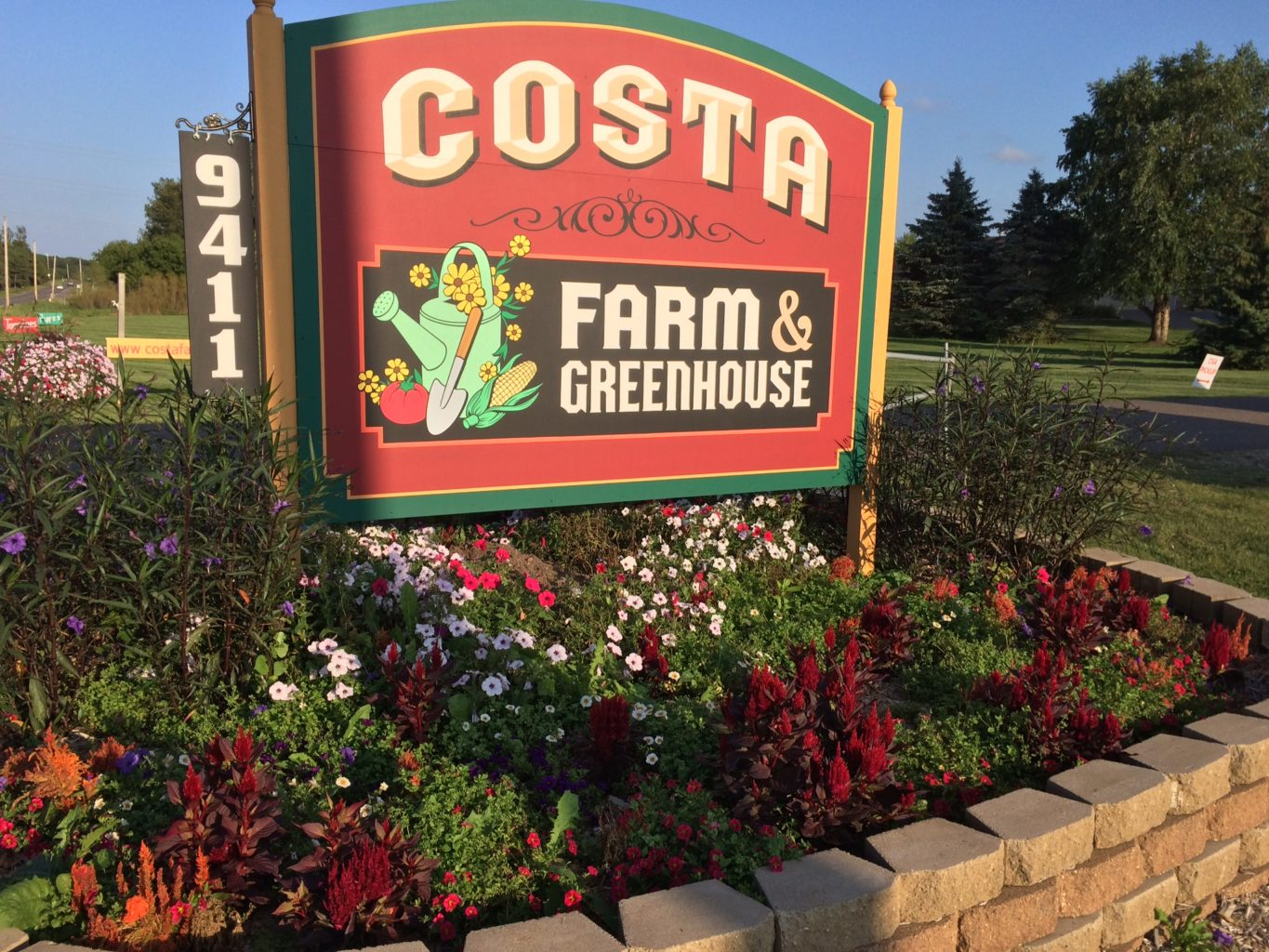 Costa farm and greenhouse outdoor sign in a flower bed. Sign design includes a red background, gold lettering, and a corn cob and tomatoe