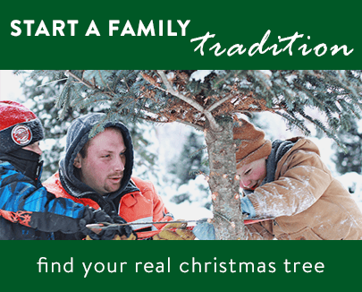 start a family tradition. find your real christmas tree